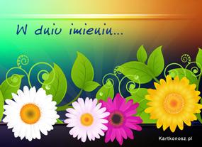 Barwne kwiaty