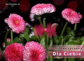 e Kartki  Imieninowe kwiatuszki,