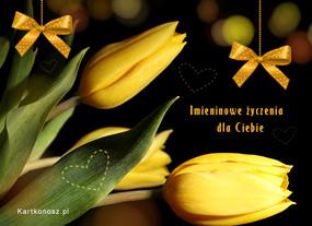 eKartki Z okazji Dnia Imieninowe tulipany,