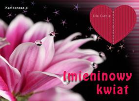 eKartki Z okazji Dnia Imieninowy kwiat,