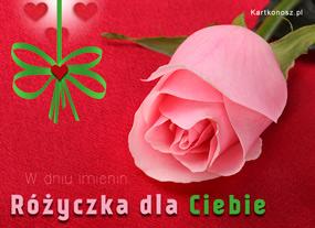 eKartki Z okazji Dnia Różyczka dla Ciebie,