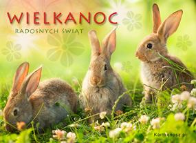 eKartki Wielkanoc Na wielkanocnej polance,
