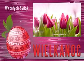 eKartki Wielkanoc Tulipanki wielkanocne,
