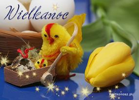 eKartki Wielkanoc Wielkanocna kurka,