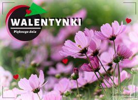 eKartki Miłość - Walentynki Pięknego dnia!,