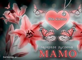 eKartki Z okazji Dnia Kwiaty i motyle,