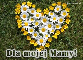 eKartki Z okazji Dnia Serce pełne kwiatów,