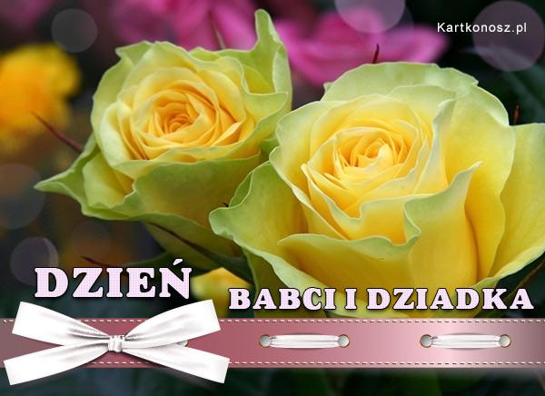 Świąteczne róże