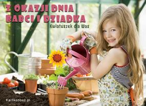 eKartki Z okazji Dnia Kwiatuszek dla Babci i Dziadka,
