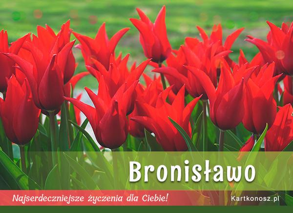 Dla Bronisławy