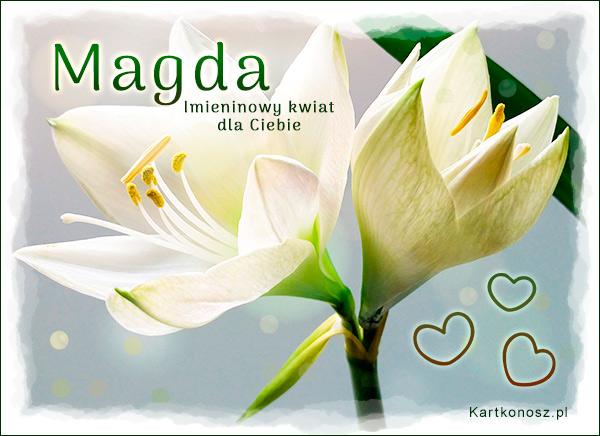 Dla Magdy
