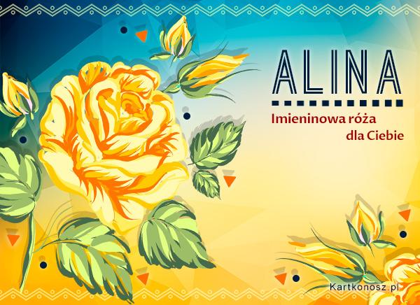 Imieninowa róża dla Aliny