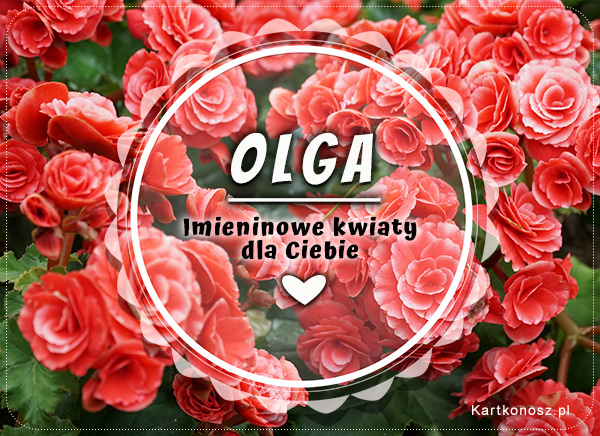 Imieninowe kwiaty dla Olgi