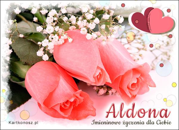 Róże dla Aldony