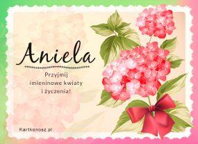 Dla Anieli