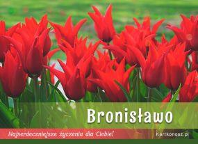 eKartki Imieniny Dla Bronisławy,