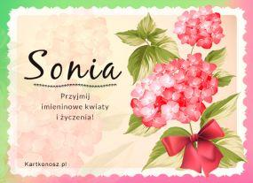 Dla Soni