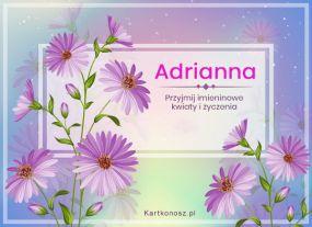 Dzień Imienin Adrianny