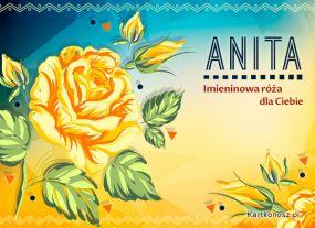 Imieninowa róża dla Anity