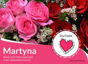Imieniny Martyny