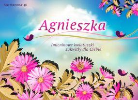 eKartki Imieniny Kwiatuszki dla Agnieszki,
