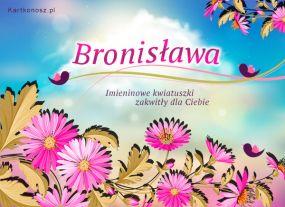 eKartki Imieniny Kwiatuszki dla Bronisławy,