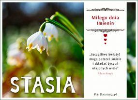 Kwiaty i życzenia dla Stasi