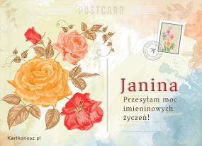 eKartki Imieniny Pocztówka dla Janiny,