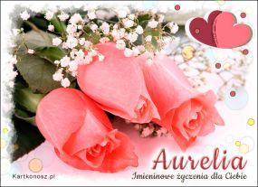 Róże dla Aurelii