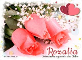 e Kartki  Róże dla Rozalii,