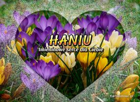 Serce dla Hani
