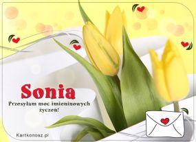 Sonia - Kartka Imieninowa
