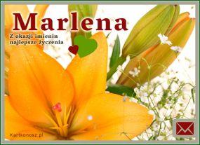 Życzenia dla Marleny