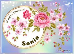 eKartki Imieniny Życzenia dla Soni,
