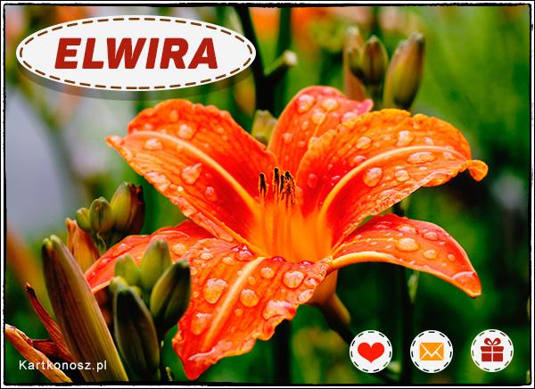 Elwira - Kartka Imieninowa