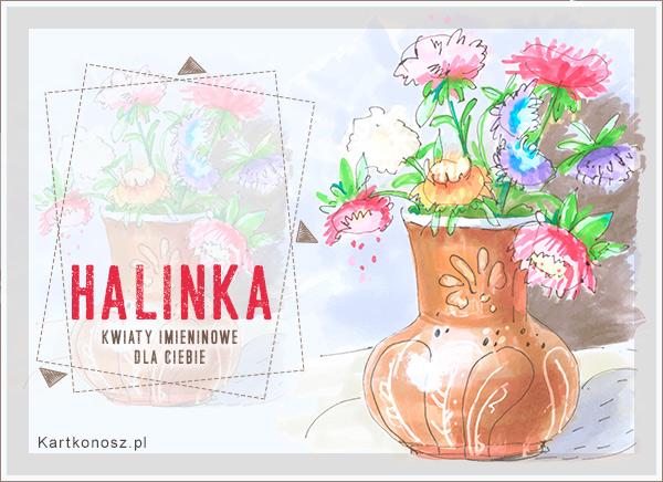 Imieninowe kwiaty dla Halinki