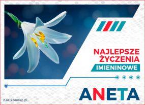 Aneta - Kartka Imieninowa