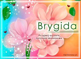 Brygida - Kartka Imieninowa