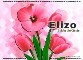 Bukiet dla Elizy
