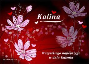 eKartki Imieniny Dla Kaliny,