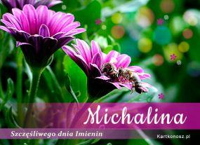 e Kartki Imieniny -> Imienne Damskie Dla Michaliny,