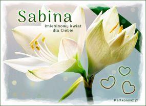 Dla Sabiny