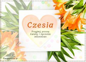 Dzień Imienin Czesi