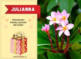 Dzień Imienin Julianny