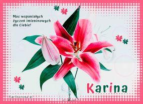 Dzień Imienin Kariny