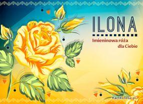 eKartki Imieniny Imieninowa róża dla Ilony,
