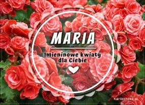 eKartki Imieniny Imieninowe kwiaty dla Marii,