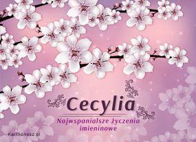 Imieniny Cecylii