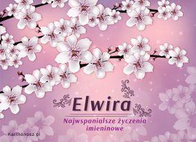 Imieniny Elwiry