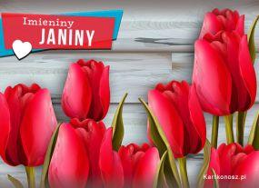 Imieniny Janiny
